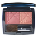 DiorBlush in Vintage Pink #839