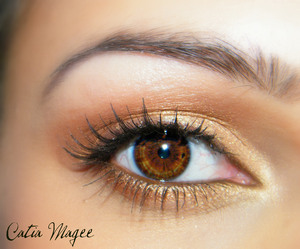 Pure fusion mineral eyeshadows Golden apricot on the lid Gold Rush on the crease White velvet as the Highlight