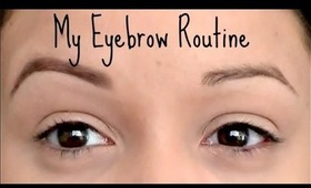 My Daily Eyebrow Routine