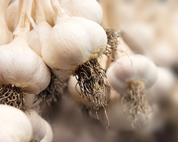 DIY Garlic Beauty Recipes