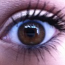 eye of the day