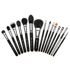 Sigma Makeup Premium Professional Kit with Brush Roll