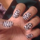 Blinged Out Zebra