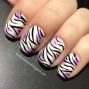 Zebra with a pop