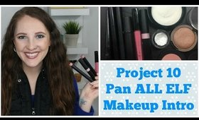 Project 10 Pan Intro ALL ELF MAKEUP