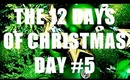 THE 12 DAYS OF CHRISTMAS: Day #5