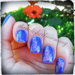 #nailartaug :bold. http://www.thepolishedmommy.com/2013/08/the-endless-royal-uptown.html