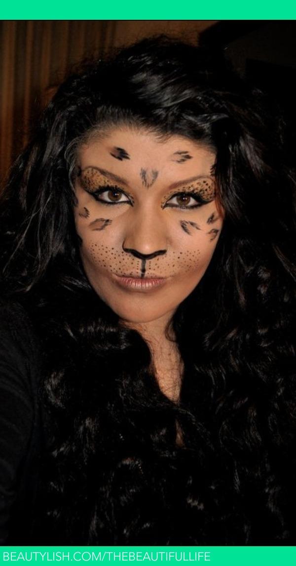 Full Face of Cat Makeup