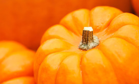 DIY Pumpkin Beauty Recipe