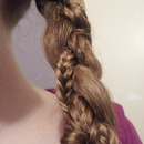 Braid with a fishtail
