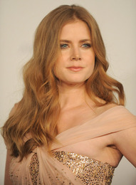 Amy Adams Makeup, LACMA Inaugural Art and Film Gala