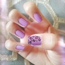 Lilac with leopard