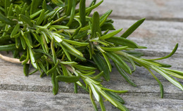 DIY Rosemary Beauty Recipes