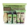 EcoTools Green, Clean, Go Travel Set