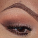 Sparkling Brown Winged Liner