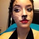 Simple Kitty Makeup