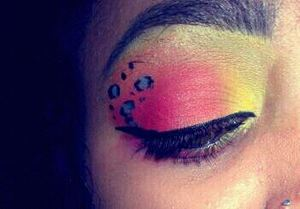 used my 120 palette by SHANY cosmetics .