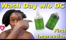 Quick Wash Day Routine skip DC| SM African Water Mint First Impression