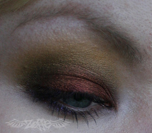 May 2nd 2010: Trying out Fyrinnae for the first time