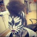 My zebra creation