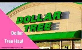 A Dollar Tree Haul