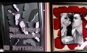 DIY Wall Art: Framed Photographs & 3D Butterflies