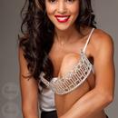 Miss Illinois USA Ashley Hooks