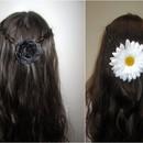 Spring Braids