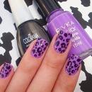 purple cheatah