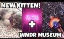 I GOT A KITTEN (+ went to the WNDR Museum)