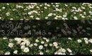 Vlog! A Trip To Ikea! | 3.26.18 - 4.1.18