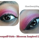 Powerpuff Girls Makeup Series - Blossom
