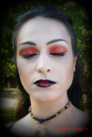 Using Pure Fusion Mineral Eyeshadows in  Crimson kiss all over the lid and blend it upwards onto the crease Petal on the tear duct and White Velvet on the brow highlight