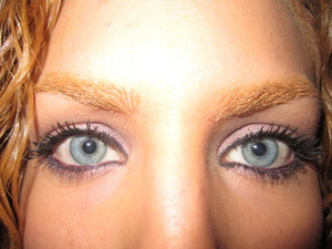 Evercolor Shadow Stick in Violet & CityChick Smokey Eye colors in Tripeca Taupe
