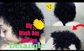 My Wash Day Routine Natural Hair + Detangle