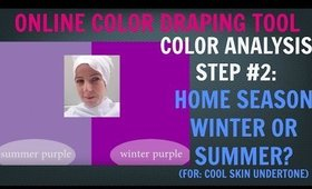 Self Color Analysis Step #2 For Cool Skin Undertone: Best Colors in the Winter or Summer Palettes?