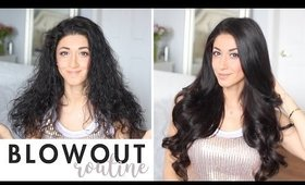 Frizzy Hair Blowout Routine | How To Get Silky Long Hair