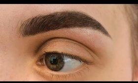 Eyebrow transformation (wax and tint)