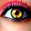 Purdy Eyes