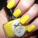 Ciate - Big Yellow Taxi