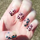 Leopard Brights