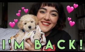 Hello, I am back on YouTube. Let's Catch Up!