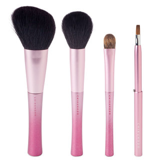 CHIKUHODO Noel Collection Rose Brush Set