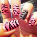 Pink, brown, black Zebra!