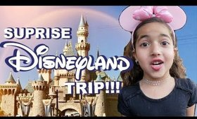 Surprise Disneyland Trip Vlog  Nura Afia