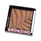 H&M Bronzing Powder