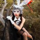 Eisen rabbit
