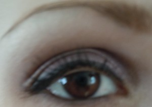 Look using Victoria Secrets sexy new year palette.