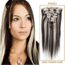 Clip In Remy Human