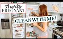 NESTING BUG HIT! KITCHEN CLEAN OUT | Kendra Atkins